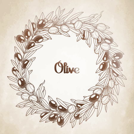 olive wreath: Graphic olive wreath isolated on aged paper. Vector natural design