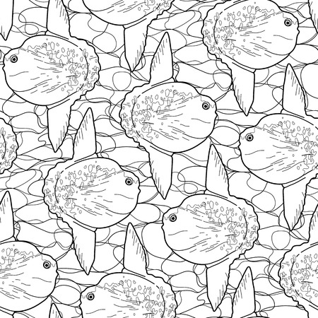 sunfish: Graphic vector sunfish seamless pattern. Sea and ocean creature in black and white colors. Coloring book page design Illustration
