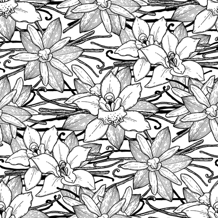 coloring book page: Graphic vanilla flowers. Vector floral seamless pattern. Coloring book page design for adults and kids