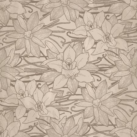 vintage background pattern: Graphic vanilla flowers. Vector floral seamless pattern Illustration