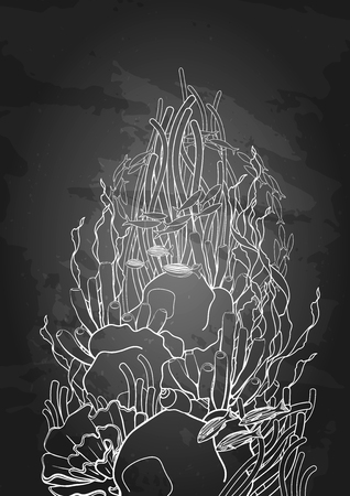 sea weeds: Graphic coral reef drawn in line art style. Ocean plants and rocks isolated on chalkboard. Vector art in black and white colors