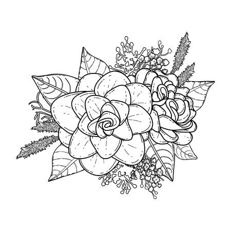 Grafische Blumenkarte. Vektor Lokalisierte Blätter Und Blumen Herein ...