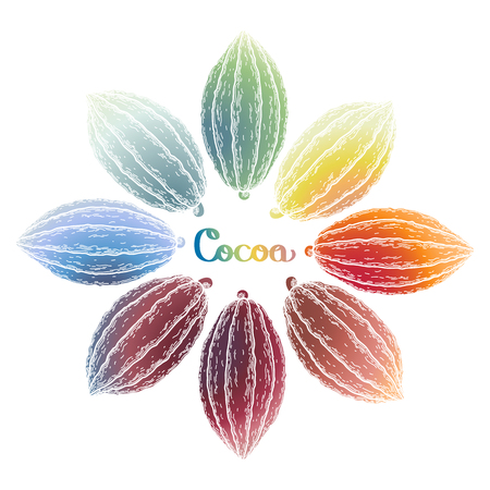 cacao: Watercolor cocoa fruit collection isolated on white background. Hand drawn exotic cacao plants in different color Illustration