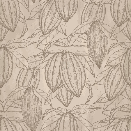 cacao: Graphic cocoa fruits on the branch on aged paper. Hand drawn exotic cacao plant. Vector seamless pattern