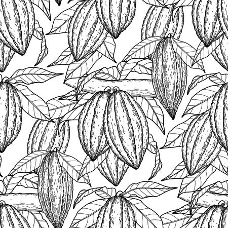 cacao: Graphic cocoa fruits on the branches. Hand drawn exotic cacao plants. Vector seamless pattern. Coloring book page design for adults and kids