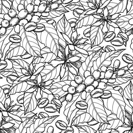 Graphic coffee beans, leaves and flowers. Vector seamless pattern. Coloring book page design for adults and kids