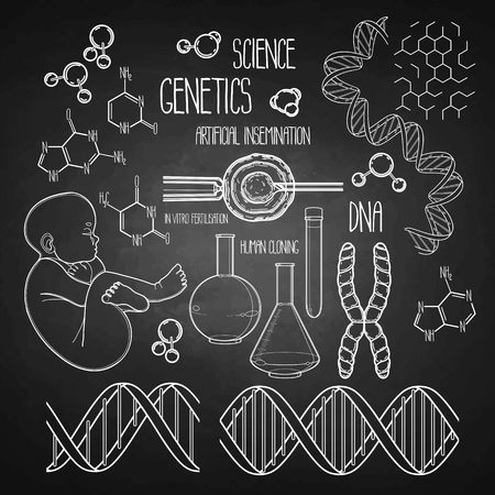 Graphic genetic research set. Vector medical and science collection isolated chalkboard