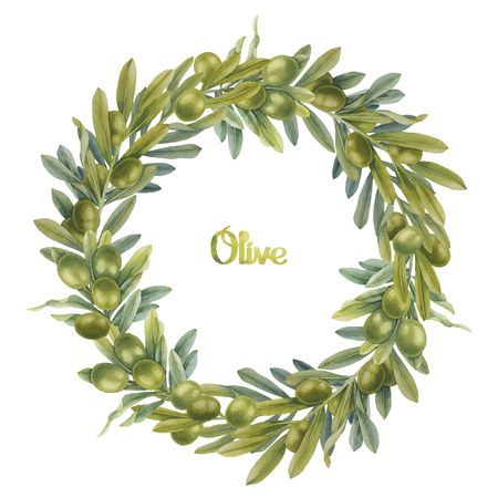 olive green: Watercolor green olive wreath. Hand painted natural design Illustration