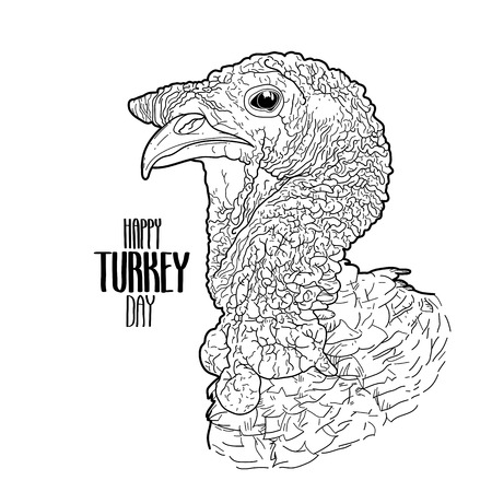 thanks giving: Vector turkey head drawn in line art style. Thanks giving day art isolated on white background. Coloring book page design for adults and kids