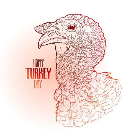 gobble: Vector turkey head drawn in line art style. Thanks giving day design element isolated on white background. Holiday art in red colors Illustration