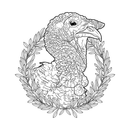 thanks giving: Graphic turkey head decorated with olive wreath. Thanks giving day vector art in black and white colors. Coloring book page design for adults and kids