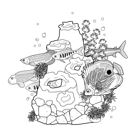 Graphic aquarium fish with coral reef drawn in line art style. Underwater scenery isolated on the white background. Coloring book page design for adults and kids. Illustration