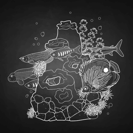 Graphic aquarium fish with coral reef drawn in line art style. Underwater scenery isolated on the chalkboard. Illustration