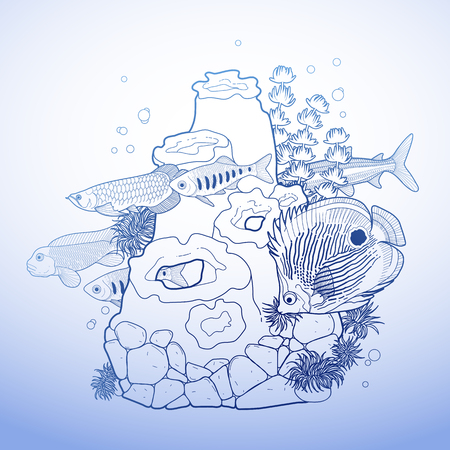 arowana: Graphic aquarium fish with coral reef drawn in line art style. Isolated underwater scenery in blue colors.