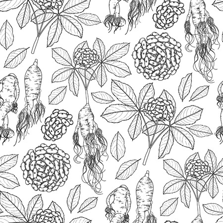 Graphic ginseng seamless pattern with roots and berries drawn in line art style. Herbal medicine. Coloring book page design for adults and kids.
