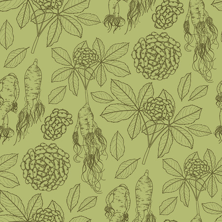 herbal medicine: Graphic ginseng seamless pattern with roots and berries drawn in line art style. Herbal medicine.