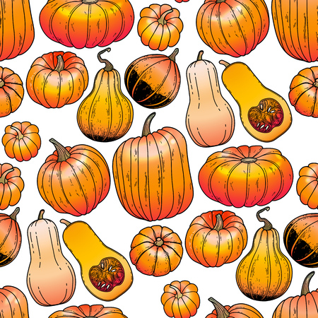 thanks giving: Graphic collection of pumpkins drawn in line art style. Vector seamless pattern. Thanks giving day design. Illustration