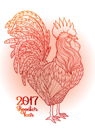 Graphic rooster drawn in line art style. Symbol of 2017 year isolated on the gradiant in red color.