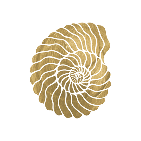 curle: Graphic circle seashell isolated on white background. Tattoo art or t-shirt design in gold color
