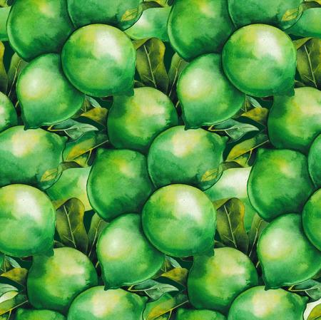 Watercolor macadamia nuts Stock Photo