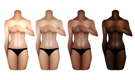 Gabarits des corps féminins Vecteurs