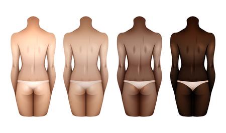 Women bodies templates Illustration