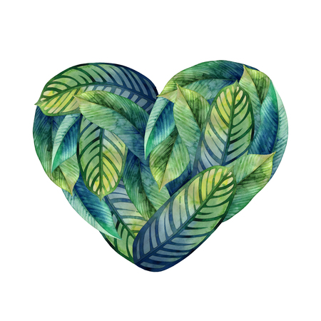 exotica: Watercolor heliconia heart