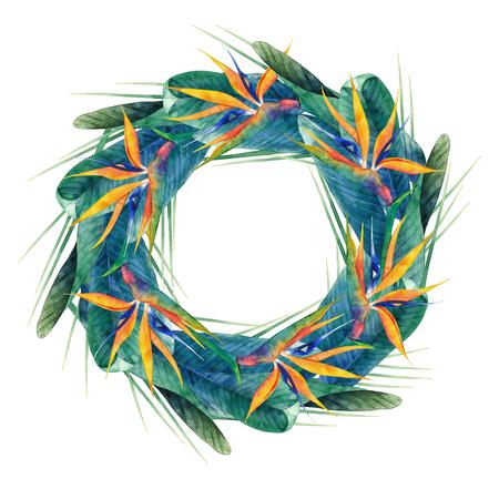 strelitzia: Watercolor strelitzia wreath