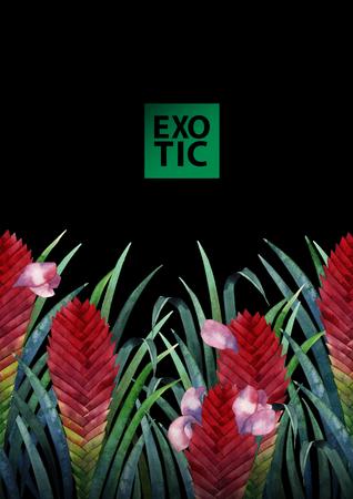 tillandsia: Watercolor tillandsia cyanea card Stock Photo