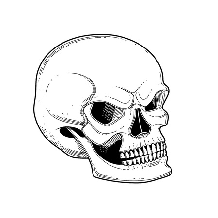 Graphic skull with fearful smile. Vector tattoo art isolated on white background. Coloring book page design for adults