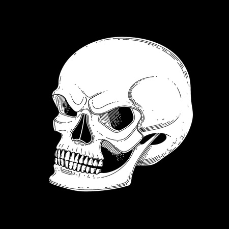 Graphic skull with fearful smile. Vector tattoo art isolated on black background. Coloring book page design for adults