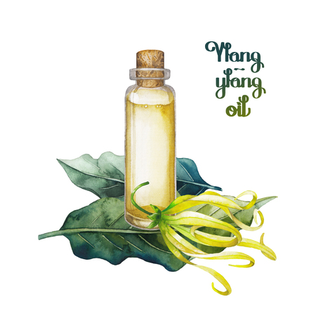 exotica: Watercolor ylang ylang oil Stock Photo