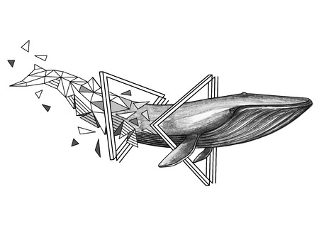 Graphic blue whale