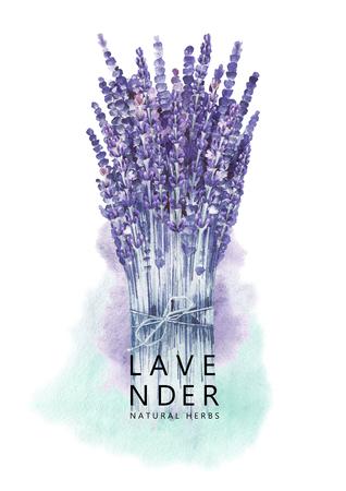 Watercolor lavender bouquet