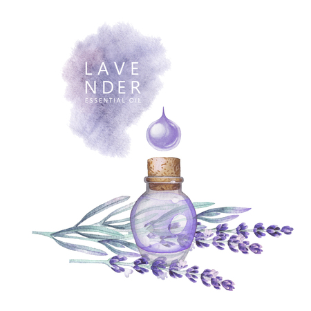 Watercolor lavender oil
