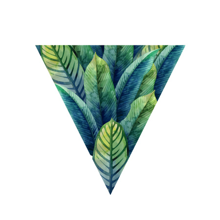Watercolor heliconia leaves Illustration
