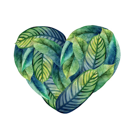 Watercolor heliconia leaves in the shape of heart. Hand painted exotic design isolated on white background Illustration
