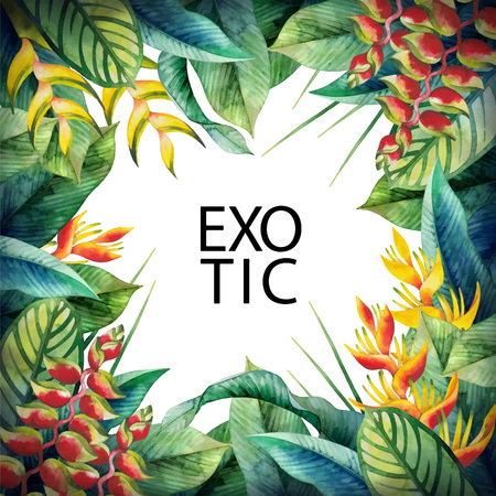 exotica: Watercolor heliconia card. Hand painted exotic design
