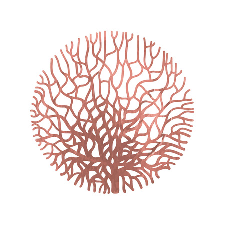 Graphic coral circle Illustration