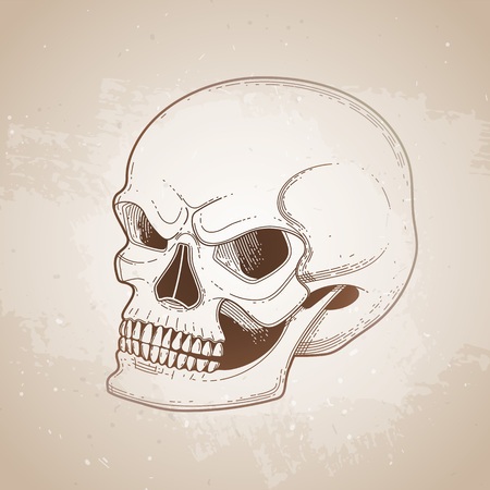 fearful: Graphic skull with fearful smile