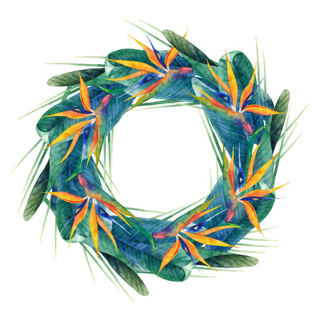 exotica: Watercolor strelitzia wreath
