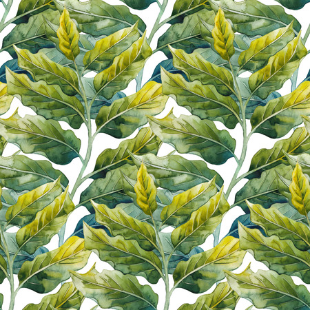 exotica: Watercolor ylang ylang pattern