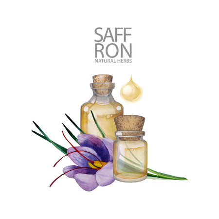 Watercolor bottle of essential oil decorated with saffron leaves and flower. Hand painted natural design isolated on white background