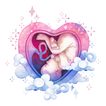 Watercolor embryo inside the heart shaped womb Stock Photo