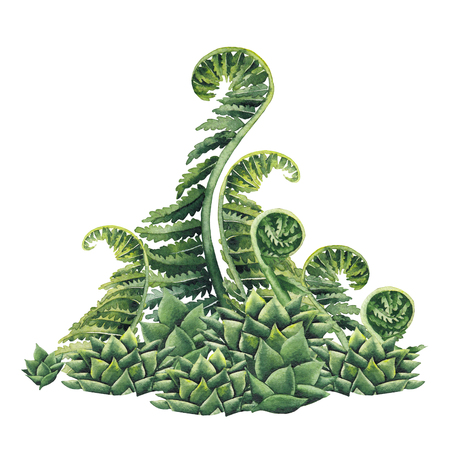 Watercolor prehistoric plants 版權商用圖片