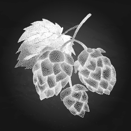 Graphic hops on the branch. Vector natural design drawn in stippling technique.