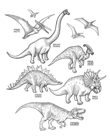 Graphic collection of dinosaurs isolated on white background. Animals of the prehistoric period drawn in engraving technique. Coloring book page design Zdjęcie Seryjne - 95760434
