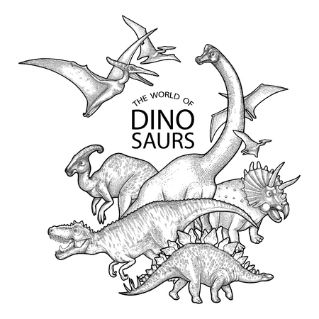Group of realistic graphic dinosaurs. Vector prehistoric animals drawn in engraving technique. 向量圖像