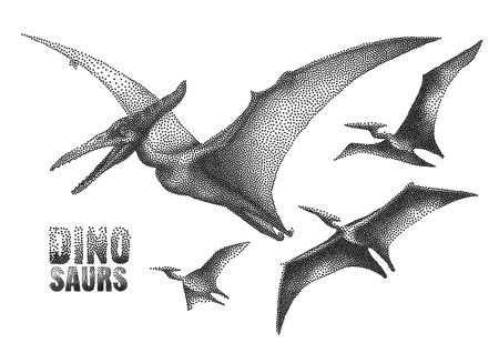 Graphic flying pterodactyls. Vector dinosaurs isolated on white background.