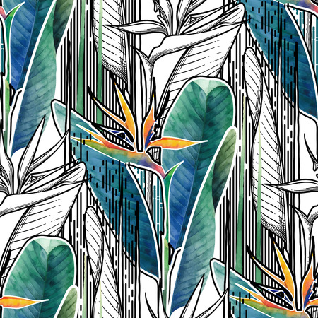 Vector seamless pattern of exotic strelitzia flowers drawn in line graphic and watercolor artistic techniques Vectores